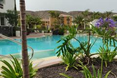 Pool-Colinas-de-los-Menceyes-v3
